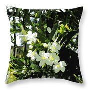 Oleander 2018 Throw Pillow