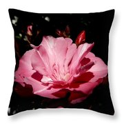 Oleander Bloom Throw Pillow