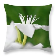 Oleander Ed Barr 1 Throw Pillow