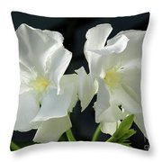 Oleander Mont Blanc 1 Throw Pillow