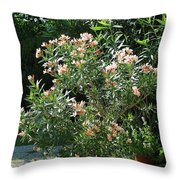 Oleander Petite Salmon 4 Throw Pillow