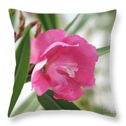 Oleander Splendens Giganteum 3 Throw Pillow