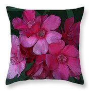 Oleanders In Pink Throw Pillow