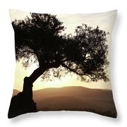 Olive At Sunset Throw Pillow