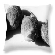 Olive Pips Throw Pillow