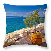 Olive Tree In Barrel By The Sea Throw Pillow