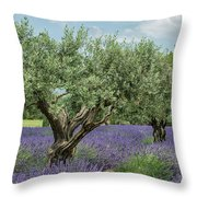 Olive Trees Of Provence Throw Pillow
