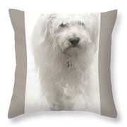Oliver... Throw Pillow