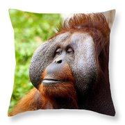 Ollie The Orangutang Throw Pillow