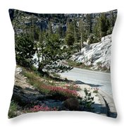 Olmsted Down The Road View Throw Pillow