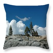 Olmsted Point Pine Rear View Throw Pillow