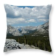 Olmsted View Down The Tree Filled Road Throw Pillow