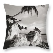 Olowalu Driftwood Throw Pillow
