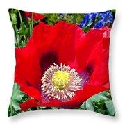 Olympia Poppy Throw Pillow