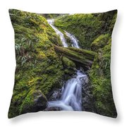 Olympic Gold Throw Pillow