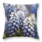 Ombre Blue - Square Throw Pillow