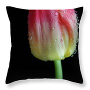 Ombre Sunrise Throw Pillow by Tracy Hall