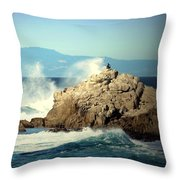 On A Clear Day Cropped Throw Pillow