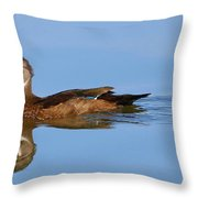 On A Clear Day You Can See.....your Reflection Throw Pillow