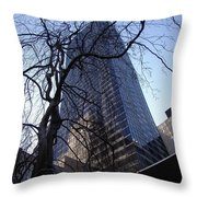 On A Clear Day...moma Courtyard Ny City Throw Pillow