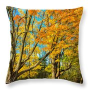 On A Country Road 5 - Paint Throw Pillow