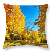 On A Country Road 6 - Paint Throw Pillow