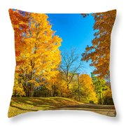 On A Country Road 6 Throw Pillow