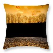On A Golden Lake Throw Pillow