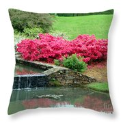 On A June Day Throw Pillow