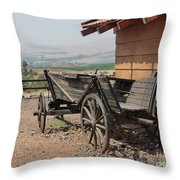 On A Kibbutz Throw Pillow