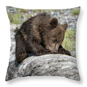 On A Log Throw Pillow