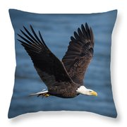 On A Mission Throw Pillow by Cindy Lark Hartman