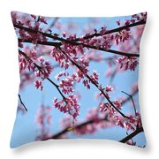 On A Spring Morning Throw Pillow