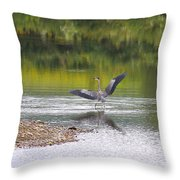 On A Stroll In The River Throw Pillow