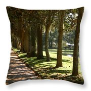 On A Sunny Afternoon Throw Pillow