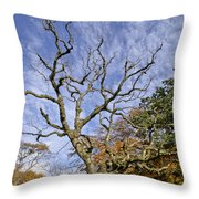 On A Verge Of The Dance. Throw Pillow
