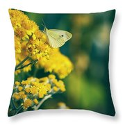 On A Warm Summer Day Throw Pillow