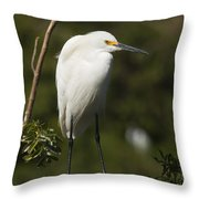 On Balance Throw Pillow