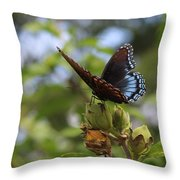 On Blue Wings Throw Pillow