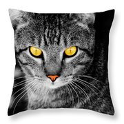 On Cat Watch Throw Pillow