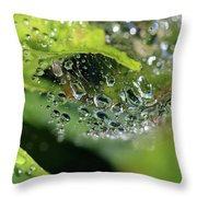 On Drops Of Dew Throw Pillow