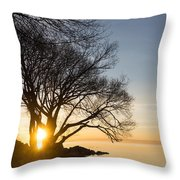 On Fire - Bright Sunrise Through The Willows Throw Pillow