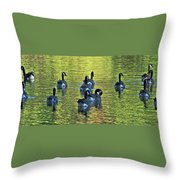 On Golden Pond Throw Pillow