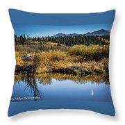 On Golden Pond Throw Pillow