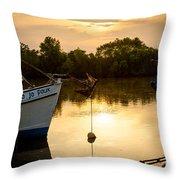 On Golden River Throw Pillow