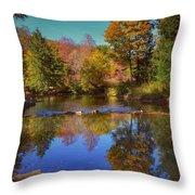 On Kinzua Creek Throw Pillow