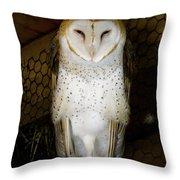 On One Leg Throw Pillow
