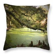 On Swamp's Edge Throw Pillow