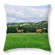 On The Alert. Throw Pillow