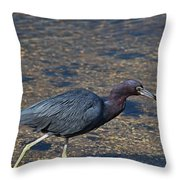 On The Banks Of The Backwater Throw Pillow